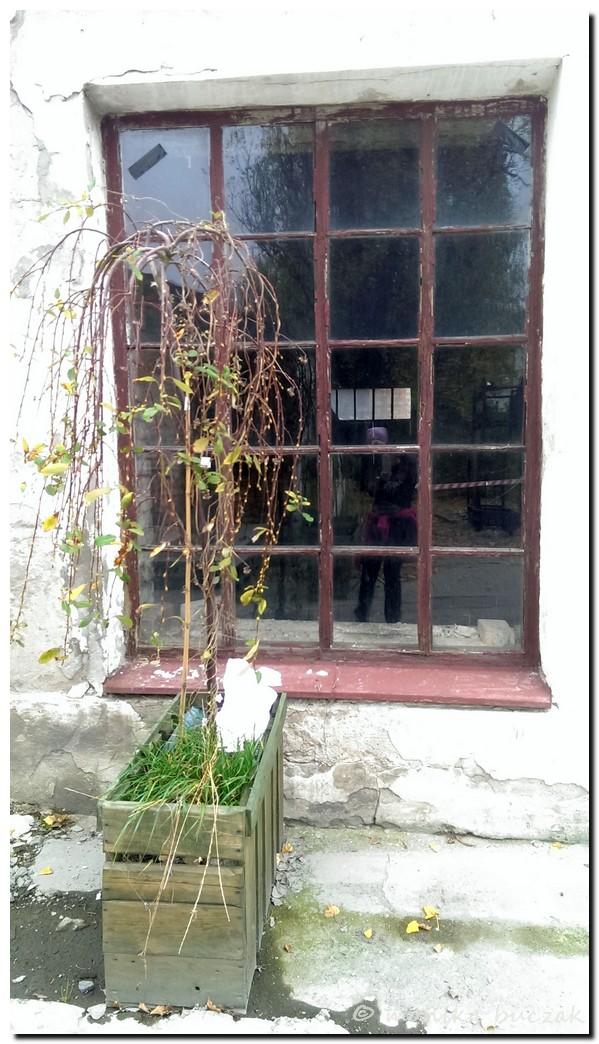 ulubiona-dycha-2013-191