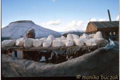 20050904-turk-kazach (22)
