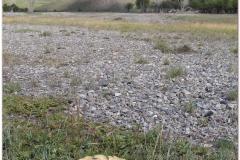 20050904-turk-kazach (33)