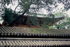 20060810 Shaolin (21)