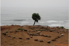 Peru 20070723 Lima (10)