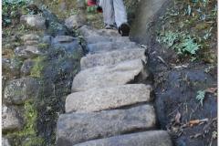 Peru 20070729 Machu Picchu (179)