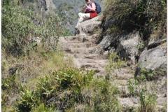 Peru 20070729 Machu Picchu (183)