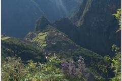Peru 20070729 Machu Picchu (193)