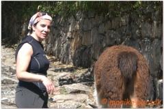Peru 20070729 Machu Picchu (195)_cr