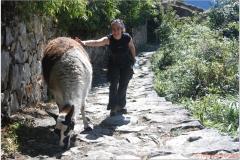 Peru 20070729 Machu Picchu (202)