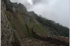 Peru 20070729 Machu Picchu (54)