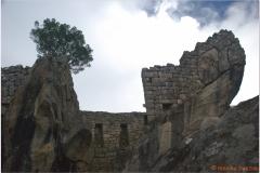 Peru 20070729 Machu Picchu (58)