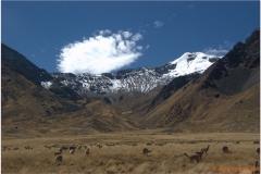 Peru 20070730 Cuzco-Puno (34)