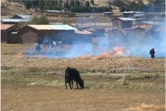 Peru 20070730 Cuzco-Puno (8)