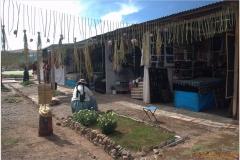 Peru 20070731 Puno (13)