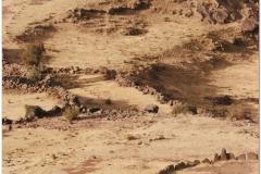 Peru 20070731 Puno Sillustani (32)