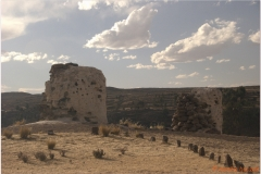Peru 20070731 Puno Sillustani (39)