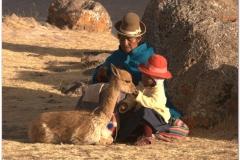 Peru 20070731 Puno Sillustani (59)