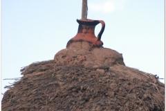 Peru 20070731 Puno Sillustani (74)