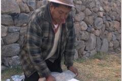 Peru 20070731 Puno Sillustani (77)