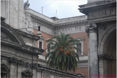 Italia20080521 (37)