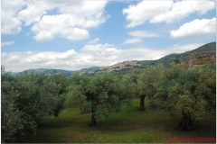 Italia20080523-1 Tivoli (26)