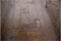 Italia20080525 Pompei (12)