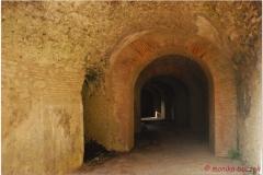 Italia20080525 Pompei (129)