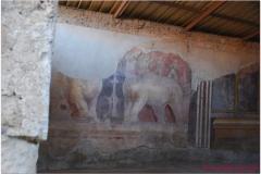Italia20080525 Pompei (23)