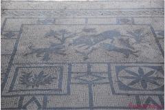 Italia20080525 Pompei (36)