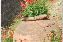 Italia20080525 Pompei (98)