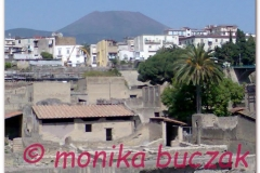 Italia20080526 Pompei-Herculaneum (9)komorka