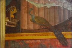 Italia20080526 Pompei-Herculaneum-Oplontis (4)