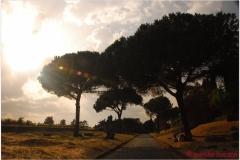 Italia20080529 appia (92)