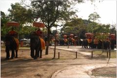 20081117 Tajlandia-Bangkok-Ayuthaya (70)