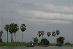 20081120 Kambodza Phnom Penh - Siem Reap (18)