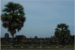 20081121 Kambodza - Siem Reap (128)