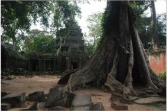 20081121 Kambodza - Siem Reap (271)