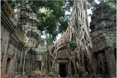 20081121 Kambodza - Siem Reap (277)