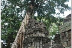 20081121 Kambodza - Siem Reap (279)