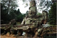 20081122 Kambodza - Siem Reap (142)