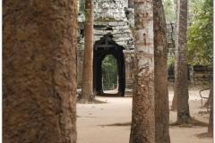 20081122 Kambodza - Siem Reap (49)
