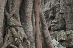 20081122 Kambodza - Siem Reap (53)