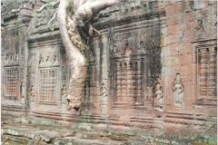 20081122 Kambodza - Siem Reap (88)