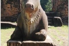 20081123 Kambodza - Siem Reap (25)