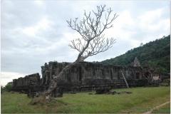 20081124 Kambodza - Laos Pakse-Champasak (46)