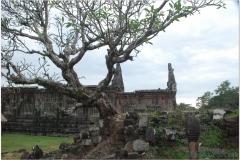 20081124 Kambodza - Laos Pakse-Champasak (49)
