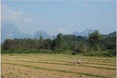 20081127 Laos Vientianne-Ponsavanh (31)