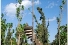 20090913 Addis 3 - Uniwersytet (9)