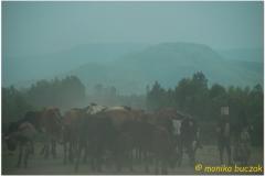 20090914 Bahar Dar-Tis Yssat (184)