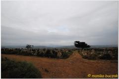 20090924 Harar (112)