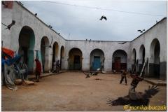 20090924 Harar (63)