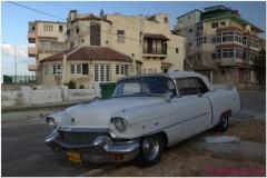 20111115 Kuba Hawana (100)