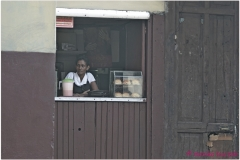 20111115 Kuba Hawana (29)